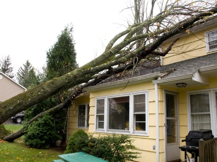 A house with a tree on it due to a storm