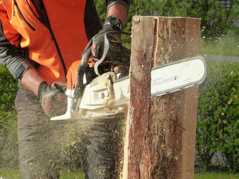 Tree removal service where a tree surgeon is cutting a part of a tree stump