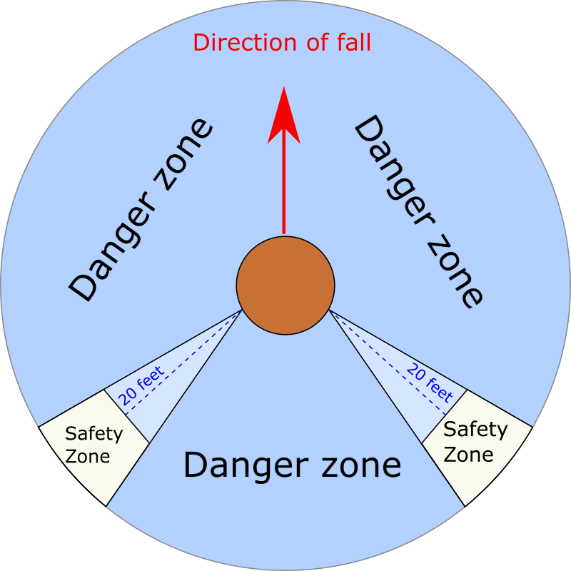 Danger zone graphic shows the safe routes for the tree surgeon