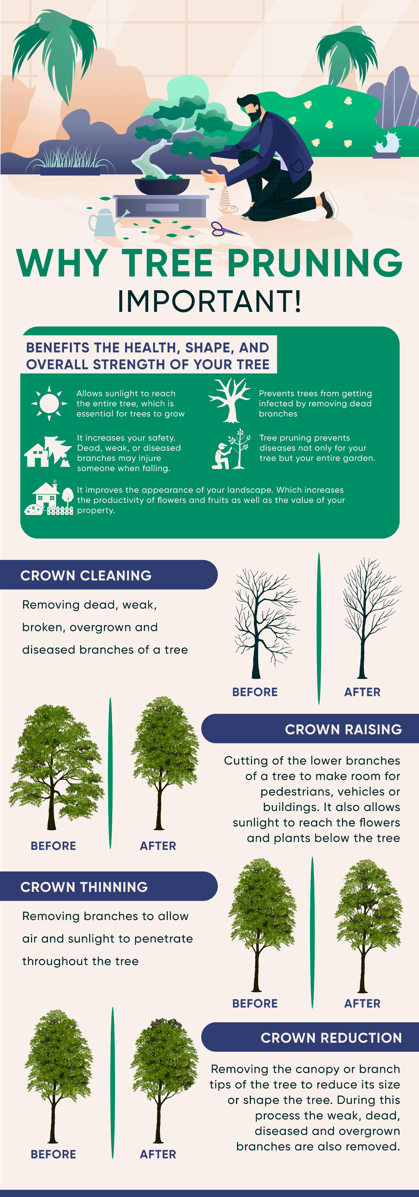 Why tree pruning is important infographic